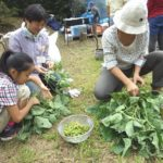 まちやまひろば9月  枝豆の収穫&里の恵みバーベキュー ①9月23日 ②9月24日